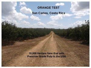 ORANGE TEST San Carlos Costa Rica 10 000