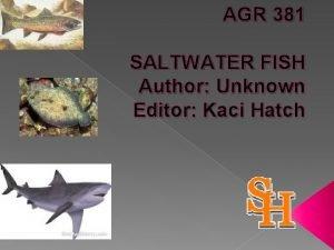 AGR 381 SALTWATER FISH Author Unknown Editor Kaci
