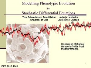 Modelling Phenotypic Evolution by Stochastic Differential Equations Tore