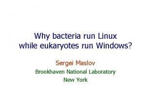 Why bacteria run Linux while eukaryotes run Windows