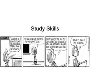 Study Skills Building Blocks for Developing Effective Study