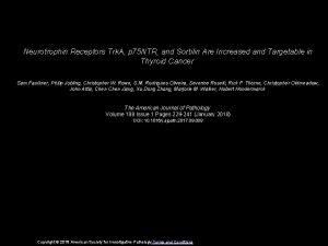 Neurotrophin Receptors Trk A p 75 NTR and