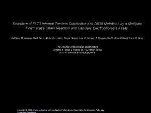 Detection of FLT 3 Internal Tandem Duplication and