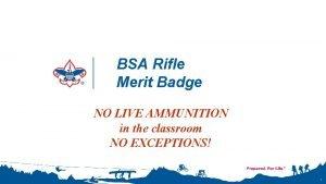 BSA Rifle Merit Badge NO LIVE AMMUNITION in