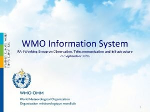 WMO Information System RAI Working Group on Observation