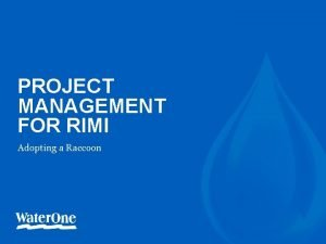 PROJECT MANAGEMENT FOR RIMI Adopting a Raccoon 1