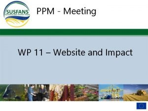 PPM Meeting WP 11 Website and Impact Website