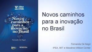 Novos caminhos para a inovao no Brasil Fernanda