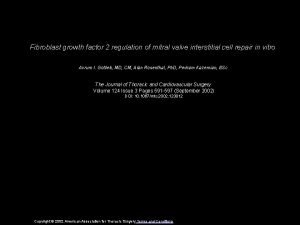 Fibroblast growth factor 2 regulation of mitral valve