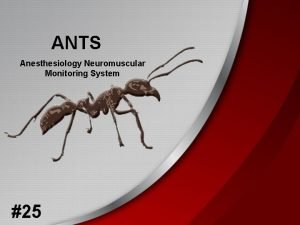 ANTS Anesthesiology Neuromuscular Monitoring System 25 Group Information