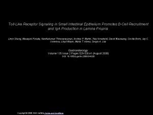 TollLike Receptor Signaling in Small Intestinal Epithelium Promotes