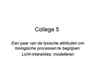 College 5 Een paar van de fysische attributen