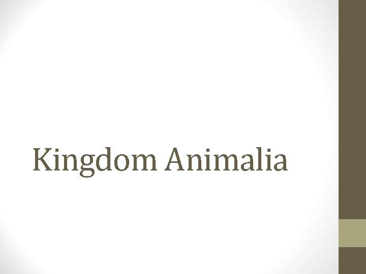 Kingdom Animalia Classification Domain Eukaryota Kingdom Animalia Cell