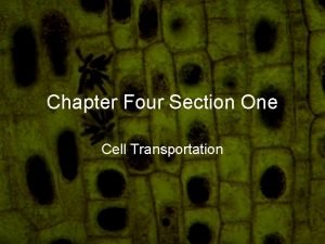 Chapter Four Section One Cell Transportation Think How