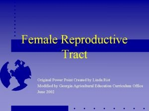 Female Reproductive Tract Original Power Point Created by