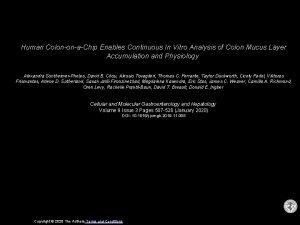 Human ColononaChip Enables Continuous In Vitro Analysis of