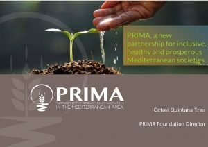 Octavi Quintana Trias PRIMA Foundation Director PRIMA can