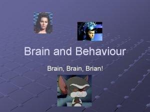 Brain and Behaviour Brain Brian Introduction Behaviour is