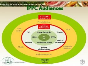 IPPC Audiences EXTERNAL AUDIENCES Private Sector Civil society