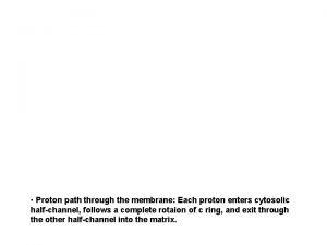 Proton path through the membrane Each proton enters