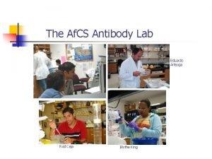 The Af CS Antibody Lab Eduardo Arteaga Rod