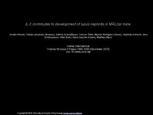 IL3 contributes to development of lupus nephritis in