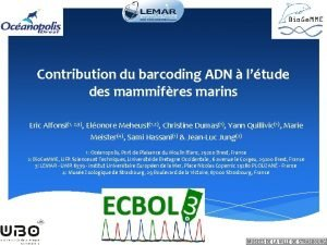 Contribution du barcoding ADN ltude des mammifres marins