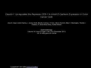 Claudin1 Upregulates the Repressor ZEB1 to Inhibit ECadherin