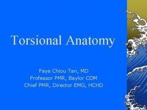 Torsional Anatomy Faye Chiou Tan MD Professor PMR