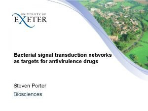 Bacterial signal transduction networks as targets for antivirulence