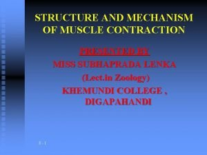 STRUCTURE AND MECHANISM OF MUSCLE CONTRACTION PRESENTED BY