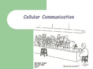 Cellular Communication Denise Green The first cell communication