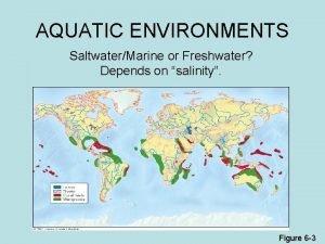 AQUATIC ENVIRONMENTS SaltwaterMarine or Freshwater Depends on salinity