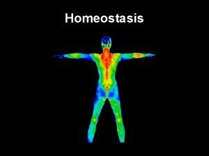 Homeostasis Homeostasis is like your homes thermostat Thermostats