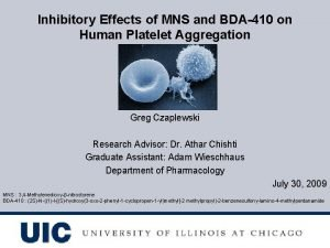 Inhibitory Effects of MNS and BDA410 on Human