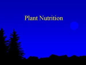Plant Nutrition Uptake of Nutrients l Macro nutrients