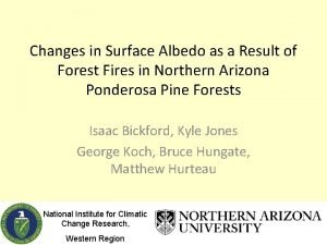 Changes in Surface Albedo as a Result of