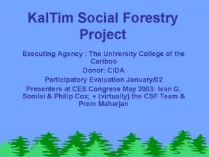 Kal Tim Social Forestry Project Executing Agency The