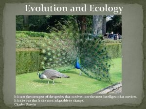 Evolution and Ecology It is not the strongest