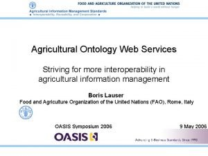 Agricultural Ontology Web Services Striving for more interoperability