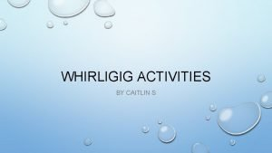 WHIRLIGIG ACTIVITIES BY CAITLIN S ACTIVITY 1 INQUIRY