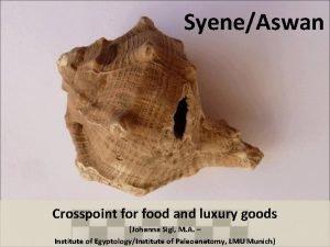 SyeneAswan Crosspoint for food and luxury goods Johanna