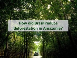 How did Brazil reduce deforestation in Amazonia The