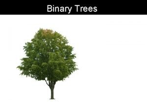 Binary Trees Binary tree structure Root Node stores
