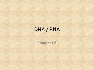 DNA RNA Chapter 08 DNA Deoxyribonucleic acid DNA