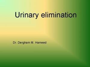 Urinary elimination Dr Dergham M Hameed Urinary System