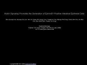 Notch Signaling Promotes the Generation of Ephrin B