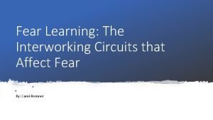 Fear Learning The Interworking Circuits that Affect Fear