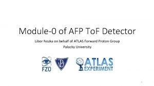 Module0 of AFP To F Detector Libor Nozka