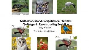 Mathematical and Computational Statistics Challenges in Reconstructing Evolution